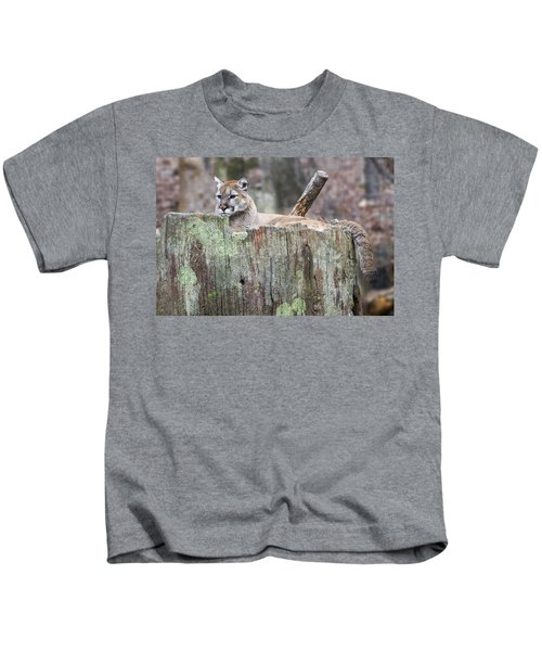 Cougar On A Stump Kids T-Shirt