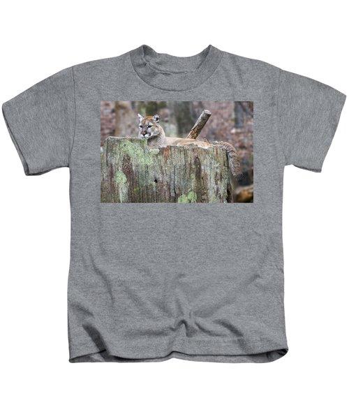 Cougar On A Stump Kids T-Shirt