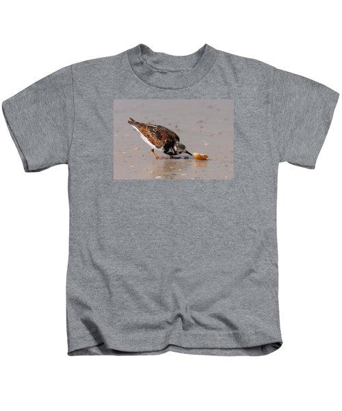 Curious Turnstone Kids T-Shirt