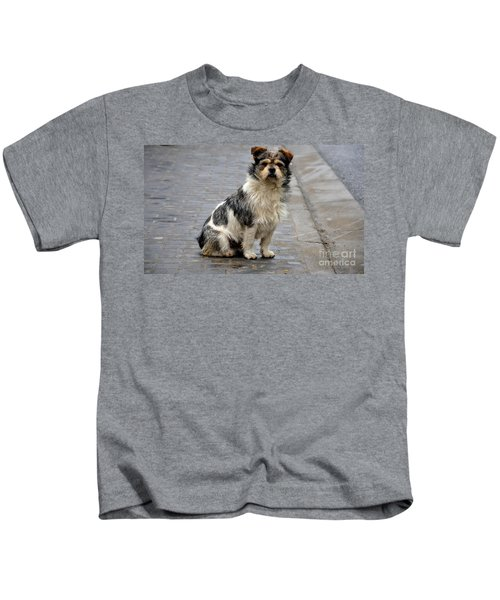 Cute Dog Sits On Pavement And Stares At Camera Kids T-Shirt