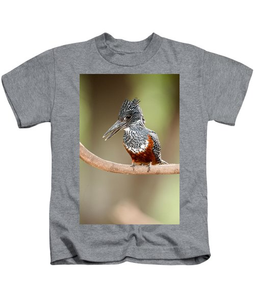 Giant Kingfisher Megaceryle Maxima Kids T-Shirt
