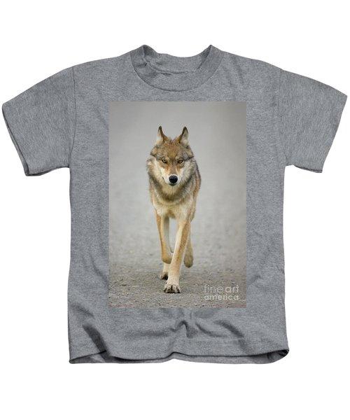 Gray Wolf Denali National Park Alaska Kids T-Shirt