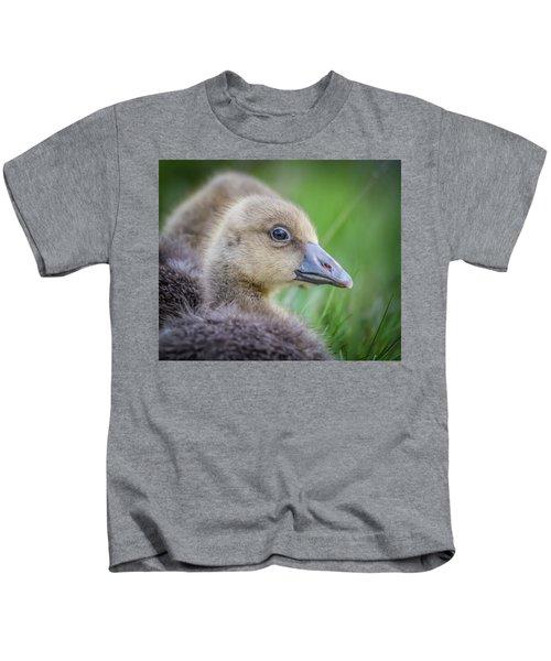 Greylag Goslings, Iceland Kids T-Shirt