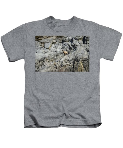 Big Horn Sheep Coming Down The Mountain  Kids T-Shirt