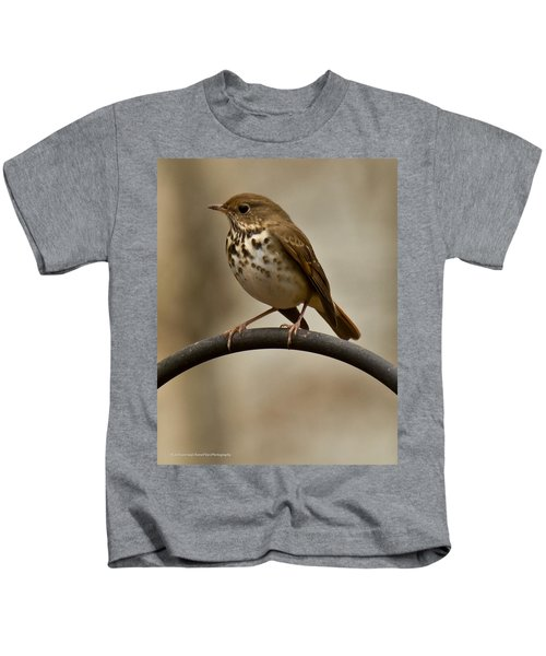 Hermit Thrush Kids T-Shirt