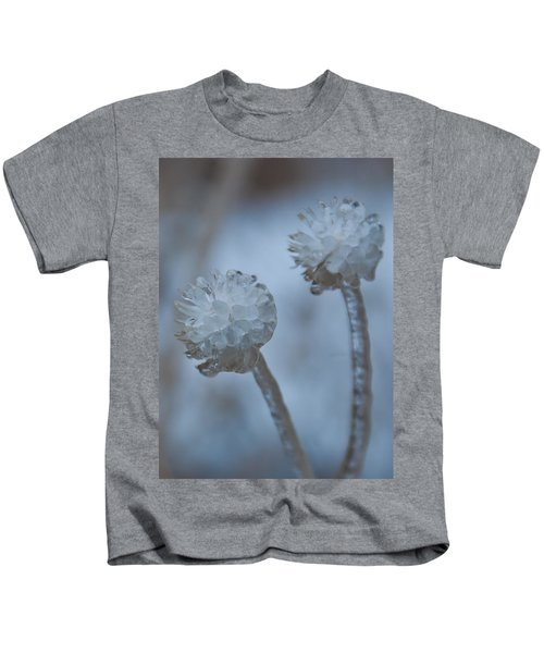 Ice-covered Winter Flowers With Blue Background Kids T-Shirt