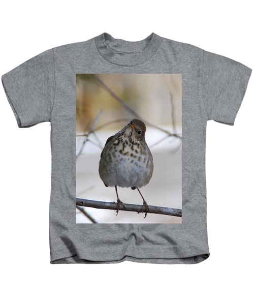 Inquisitive Hermit Thrush Kids T-Shirt