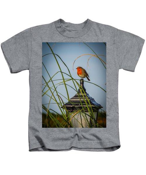 Irish Robin Perched On Garden Lamp Kids T-Shirt