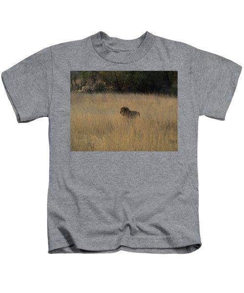 Lion Panthera Leo In Tall Grass That Kids T-Shirt