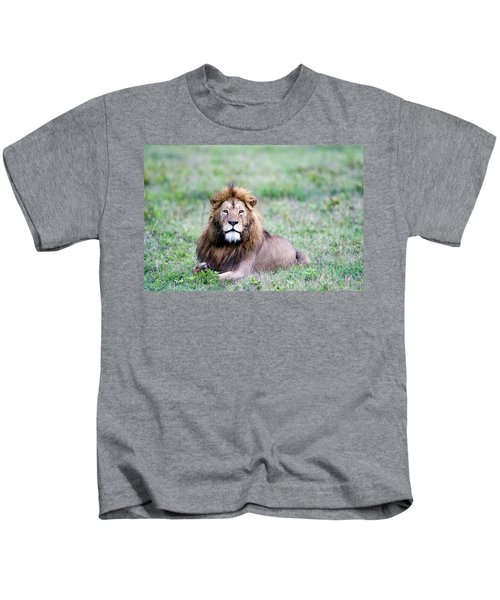 Lion Panthera Leo Relaxing In A Field Kids T-Shirt