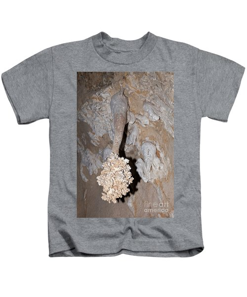 Lions Tail Carlsbad Caverns National Park Kids T-Shirt