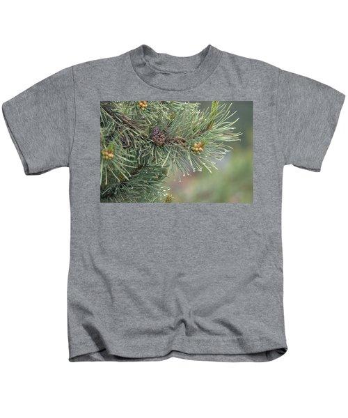 Lodge Pole Pine In The Fog Kids T-Shirt