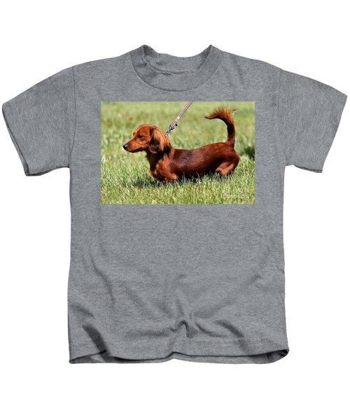 Long Haired Dachshund Kids T-Shirt