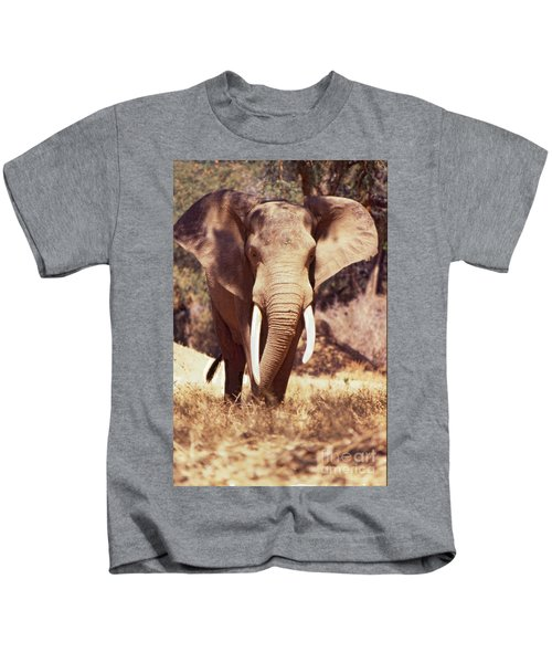 Mana Pools Elephant Kids T-Shirt