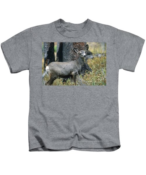 Mule Deer In Yellowstone Kids T-Shirt
