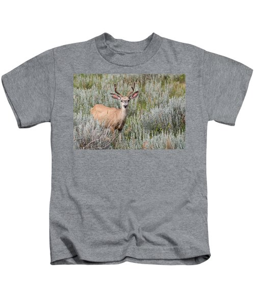 Mule Deer Kids T-Shirt