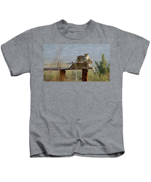 Out Of Africa Lions Kids T-Shirt