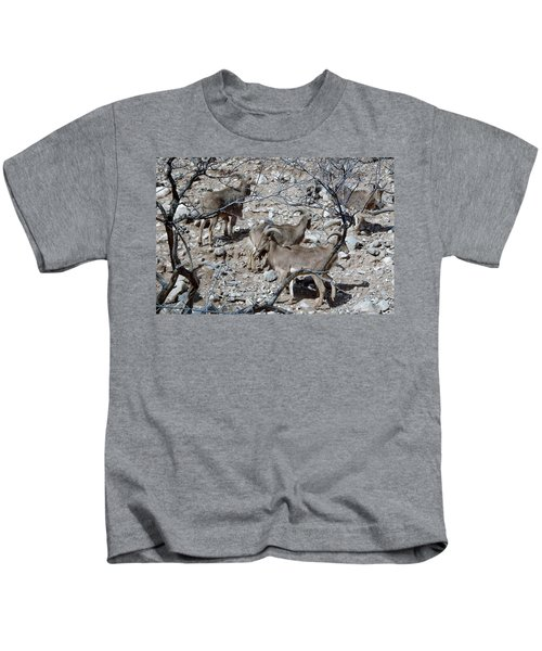 Out Of Africa  Mountain Goats Kids T-Shirt