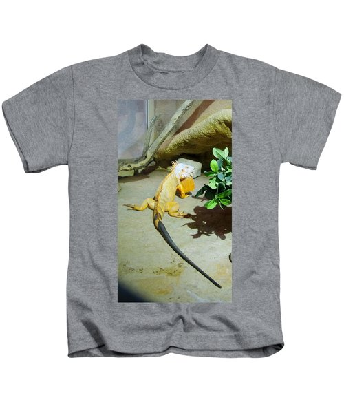Out Of Africa Orange Lizard 2  Kids T-Shirt