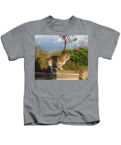 Out Of Africa  Tiger 1 Kids T-Shirt