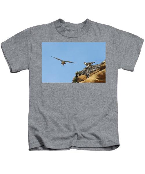 Peregrine Falcons - 1 Kids T-Shirt