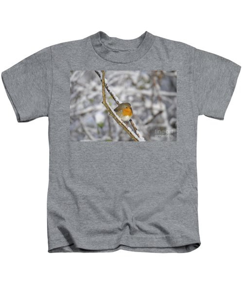 Robin At Winter Kids T-Shirt