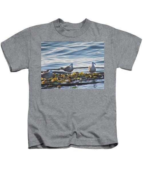 Seagulls In Victoria Bc Kids T-Shirt