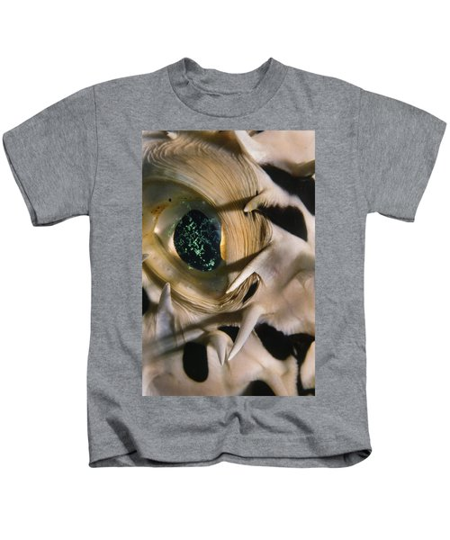 The Eye Of A Pufferfish Kids T-Shirt