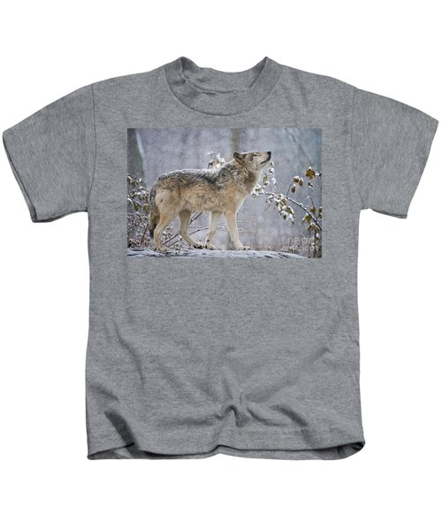 Timber Wolf Pictures 188 Kids T-Shirt