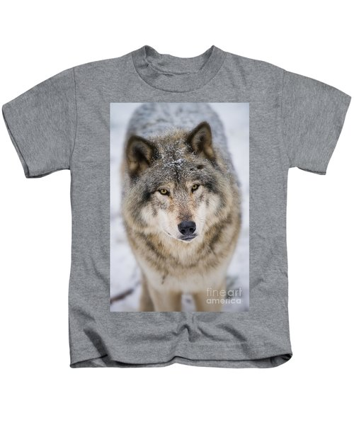 Timber Wolf Pictures 254 Kids T-Shirt