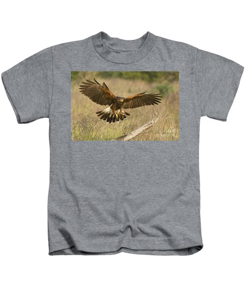 Wild Harris Hawk Landing Kids T-Shirt