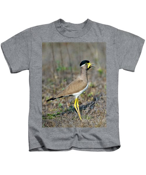 Yellow-wattled Lapwing Vanellus Kids T-Shirt by Panoramic Images