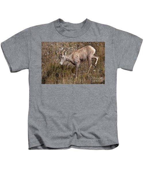 Bighorn Ewe Kids T-Shirt