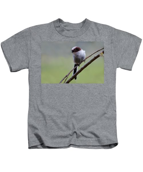 Long Tailed Tit Kids T-Shirt