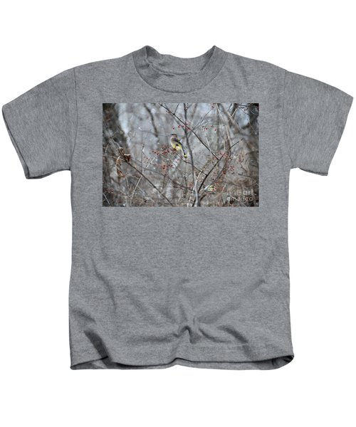 Cedar Wax Wing 3 Kids T-Shirt by David Arment