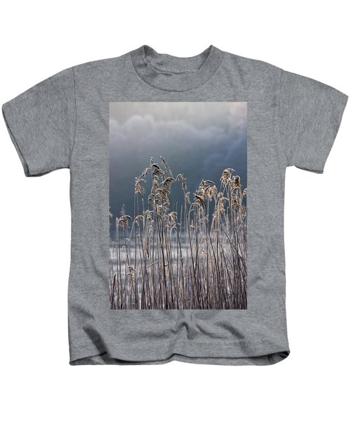 Frozen Reeds At The Shore Of A Lake Kids T-Shirt