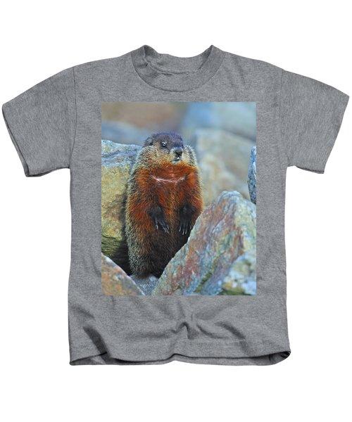 Woodchuck Kids T-Shirt by Tony Beck