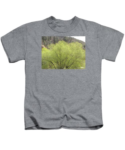 Tree Ute Pass Hwy 24 Cos Co Kids T-Shirt