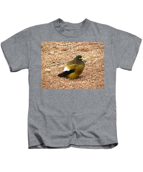 Evening Grossbeak Divide Co Kids T-Shirt