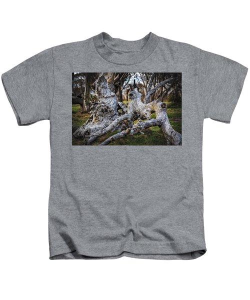 Fallen From Grace Kids T-Shirt