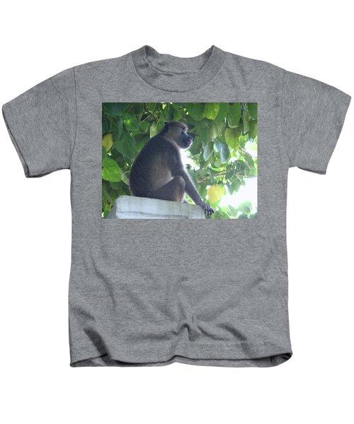 Baboon Sits Guard  Kids T-Shirt