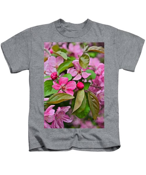 2015 Spring At The Gardens Pink Crabapple Blossoms 2 Kids T-Shirt