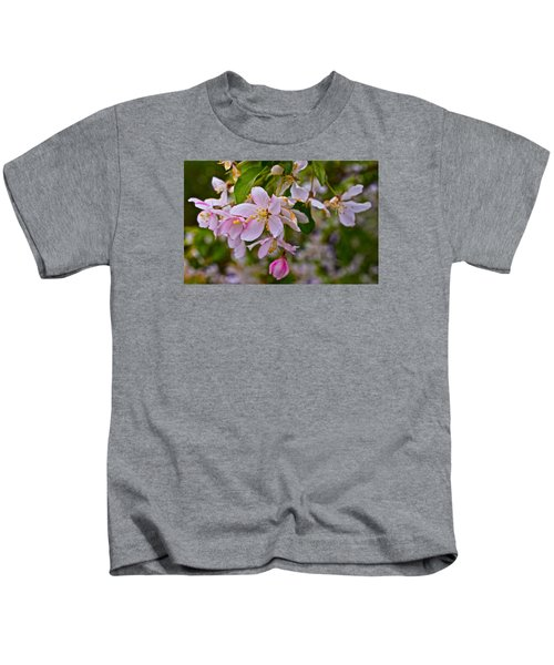 2015 Spring At The Gardens White Crabapple Blossoms 1 Kids T-Shirt