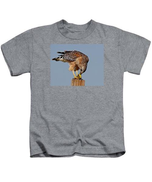 Red Shouldered Hawk Kids T-Shirt