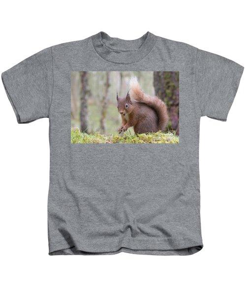 Red Squirrel - Scottish Highlands #8 Kids T-Shirt