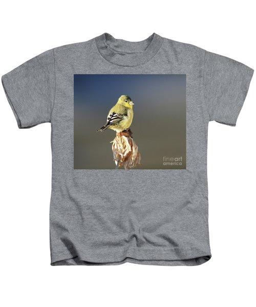 Lesser Goldfinch Kids T-Shirt