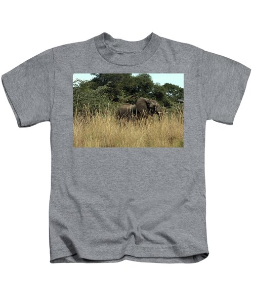 African Elephant In Tall Grass Kids T-Shirt