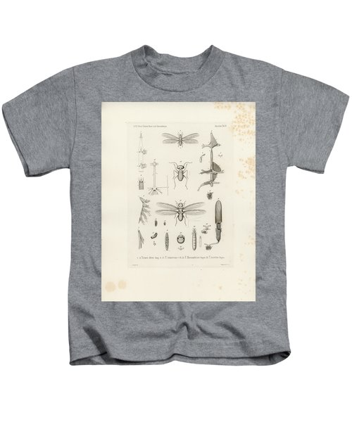 African Termites And Their Anatomy Kids T-Shirt