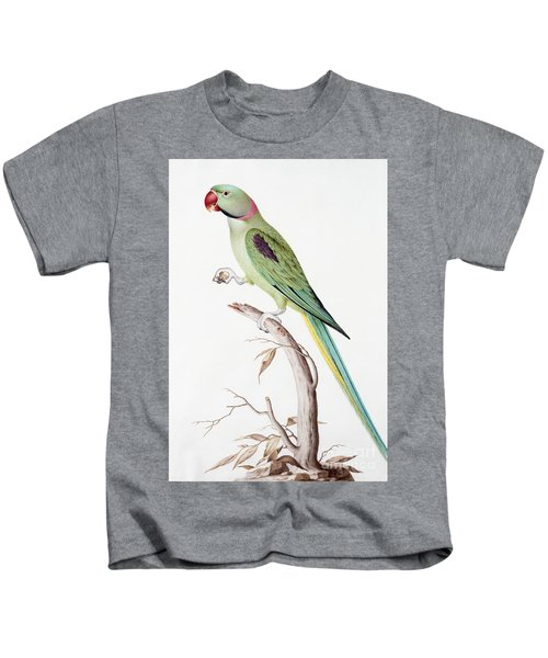 Alexandrine Parakeet Kids T-Shirt by Nicolas Robert