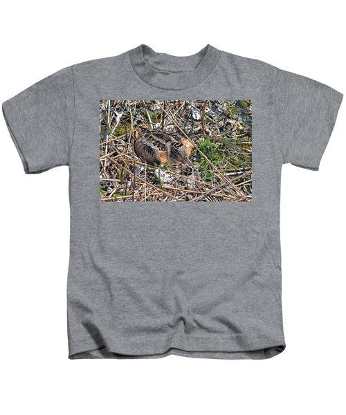American Woodcock Incubating Her Chicks Kids T-Shirt